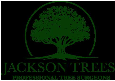 Jackson Tree Services